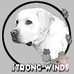Dexxter Strong Winds Kennel sm