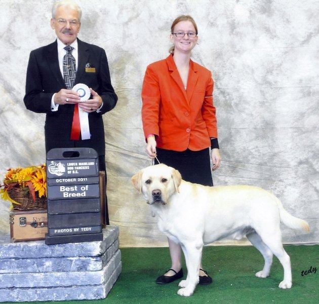 Dexxter_Best of Breed_Canadian International_2011